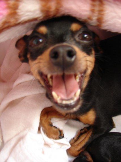 a jeden z jej úsmevov...