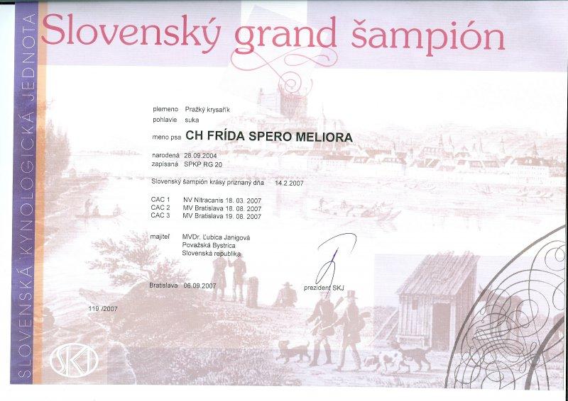 Slovenský grand šampión.