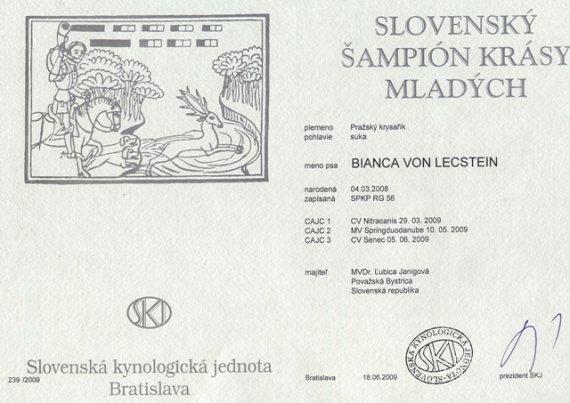 Slovenský šampión krásy mladých