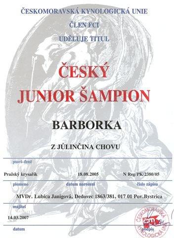 Český junior šampión.