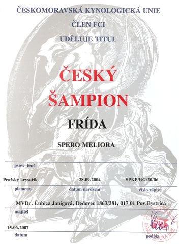 Český šampión.