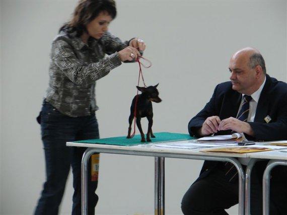 NVP-Brusinka Alimak+panička+ prísne oko posudzovateľa
